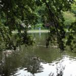 Parchi verdi Dublino
