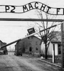 """Beppe Grillo """"Se questo è un paese"""" blog"""