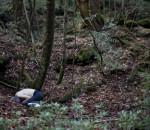 La Foresta dei Morti - Aokigahara